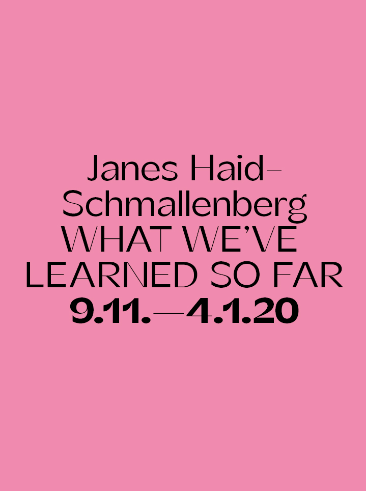 Janes Haid Schmallenberg WHAT WE'VE LEARNED SO FAR Text