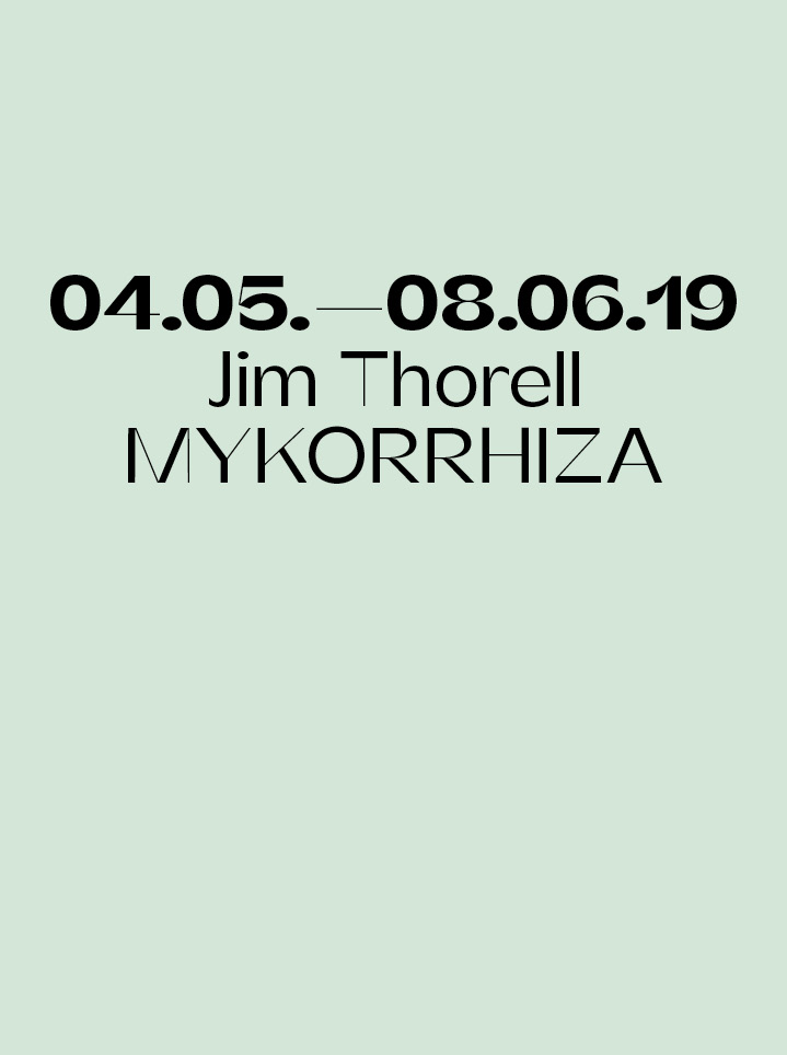 Jim Thorell MYKORRHIZA  Text