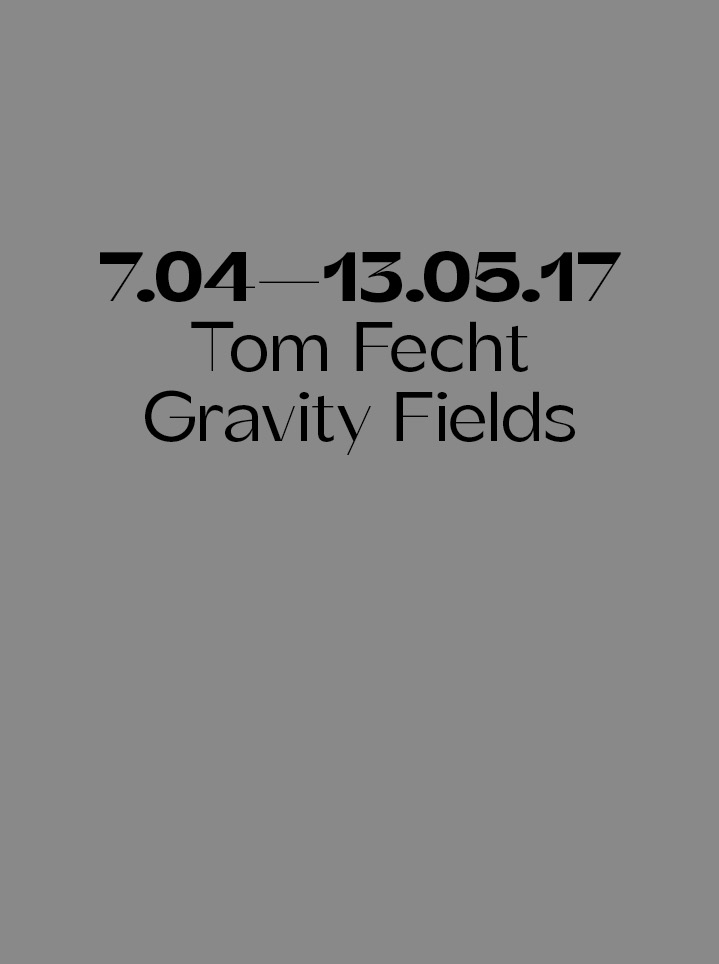 Tom Fecht  Gravity Fields - Text