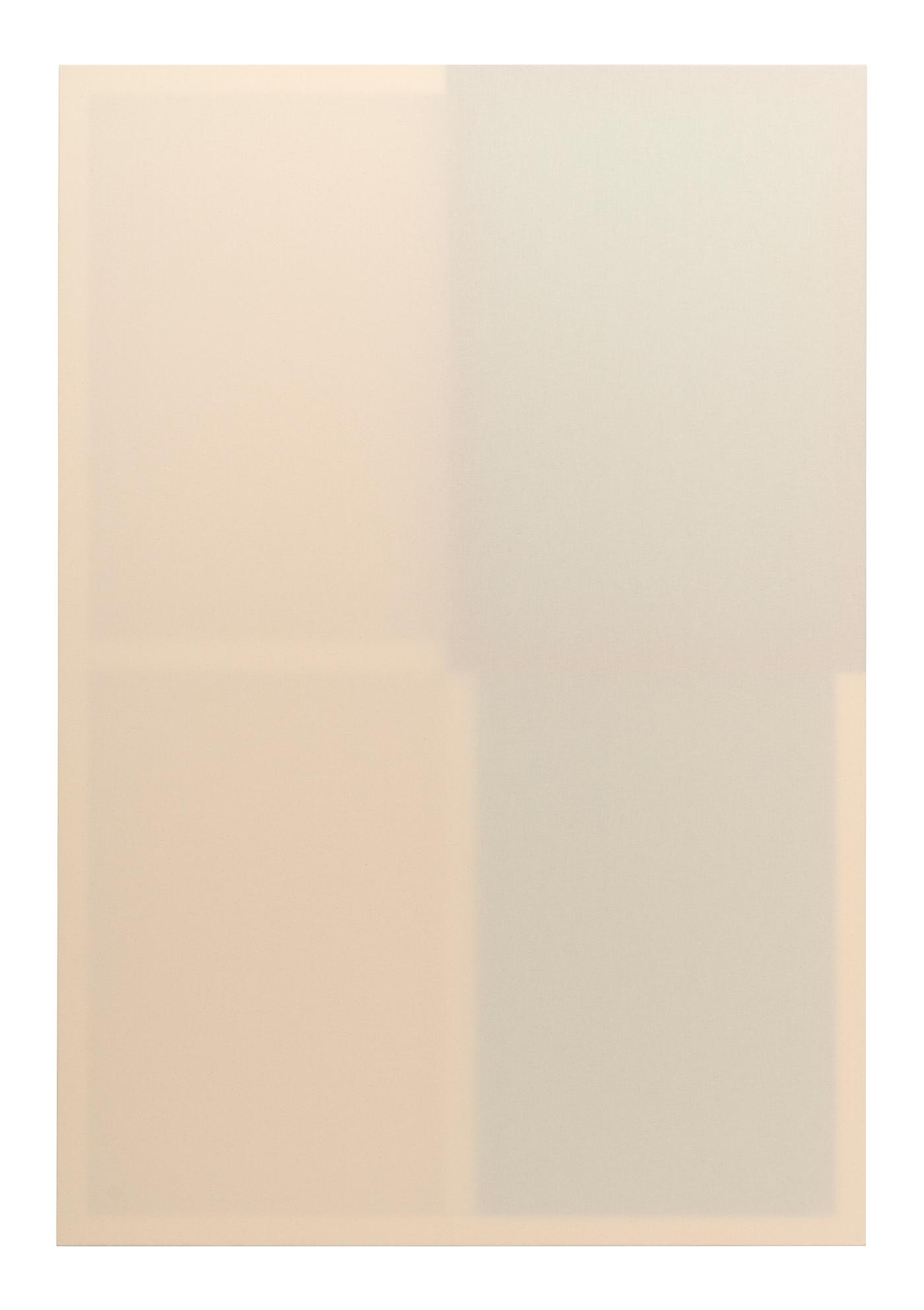Daniel Schubert, untitled (pieces series 2:3), 2021, wooden stretcher, canvas, distemper, acrylic ,170 x 115 cm
